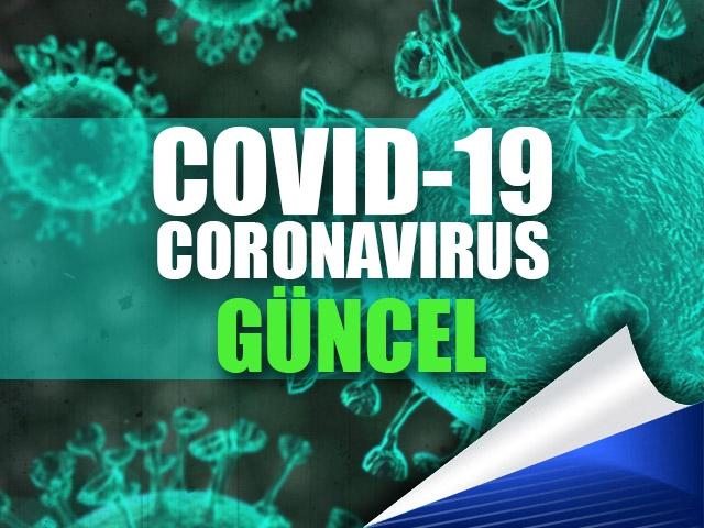 Türkiye'de Korona Virüs Testi Nerede Nasıl Yapılır?
