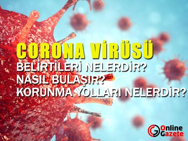 Korona Virüs Hakkında Merak Ettikleriniz...